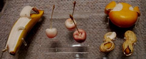 Ivoryfruit