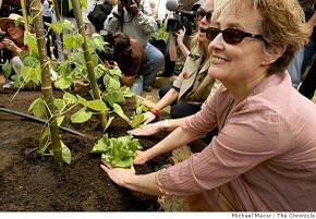 Alicewaters