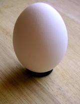 Egg_1