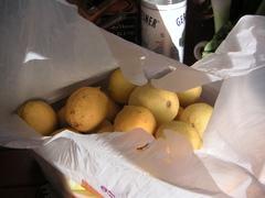 Lemonsjpg