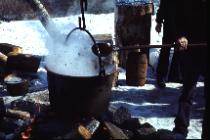 Mapleboiling